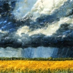 Canola Storm Colours