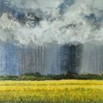 Canola Rain