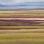 Grassland September