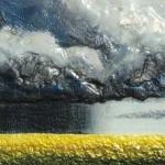 Canola Cloud Burst