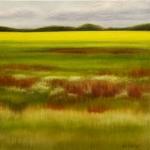 Saskatchewan Meadow