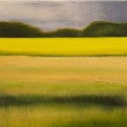 Meadow Hues