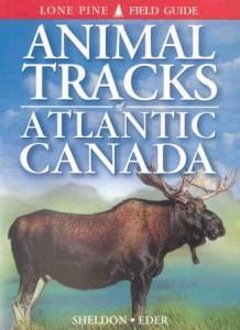 books-animaltracksofatlanticcanada