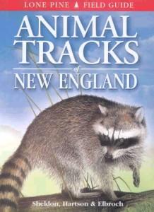 books-animaltracksofnewengland