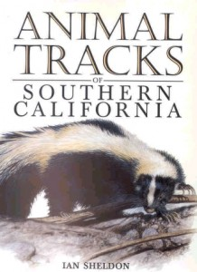 books-animaltracksofsoutherncalifornia