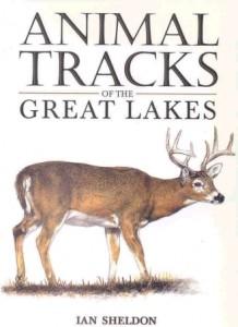 books-animaltracksofthegreatlakes